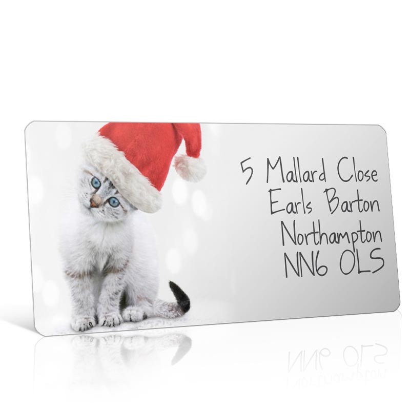 Christmas A4 Sheet Labels - Cat in a Santa Hat