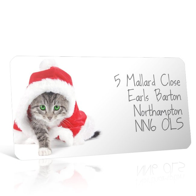 Christmas A4 Sheet Labels - Cat in a Santa Hat 2